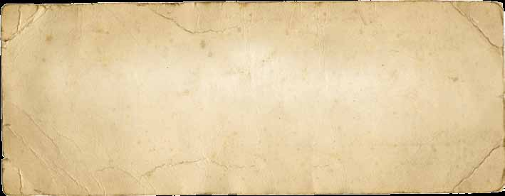 During our excursions you will be able to study forest yield and production, conservation in productive