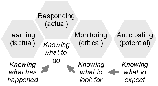 Figure 3: The four qualities of resilience All four qualities depend critically on what kind of model the organisation has about itself, i.e., what it is and what it does, and about the environment in which it exists.