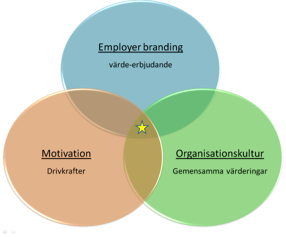 Figur 4. Illustration av relationen mellan employer branding, organisationskultur och motivation. Källa: Hobert och Sturesson (2014).