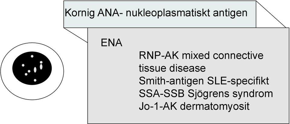disease Smith-antigen SLE-specifikt