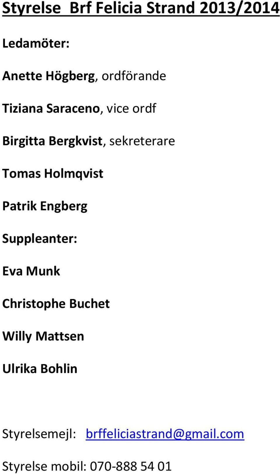 Patrik Engberg Suppleanter: Eva Munk Christophe Buchet Willy Mattsen Ulrika
