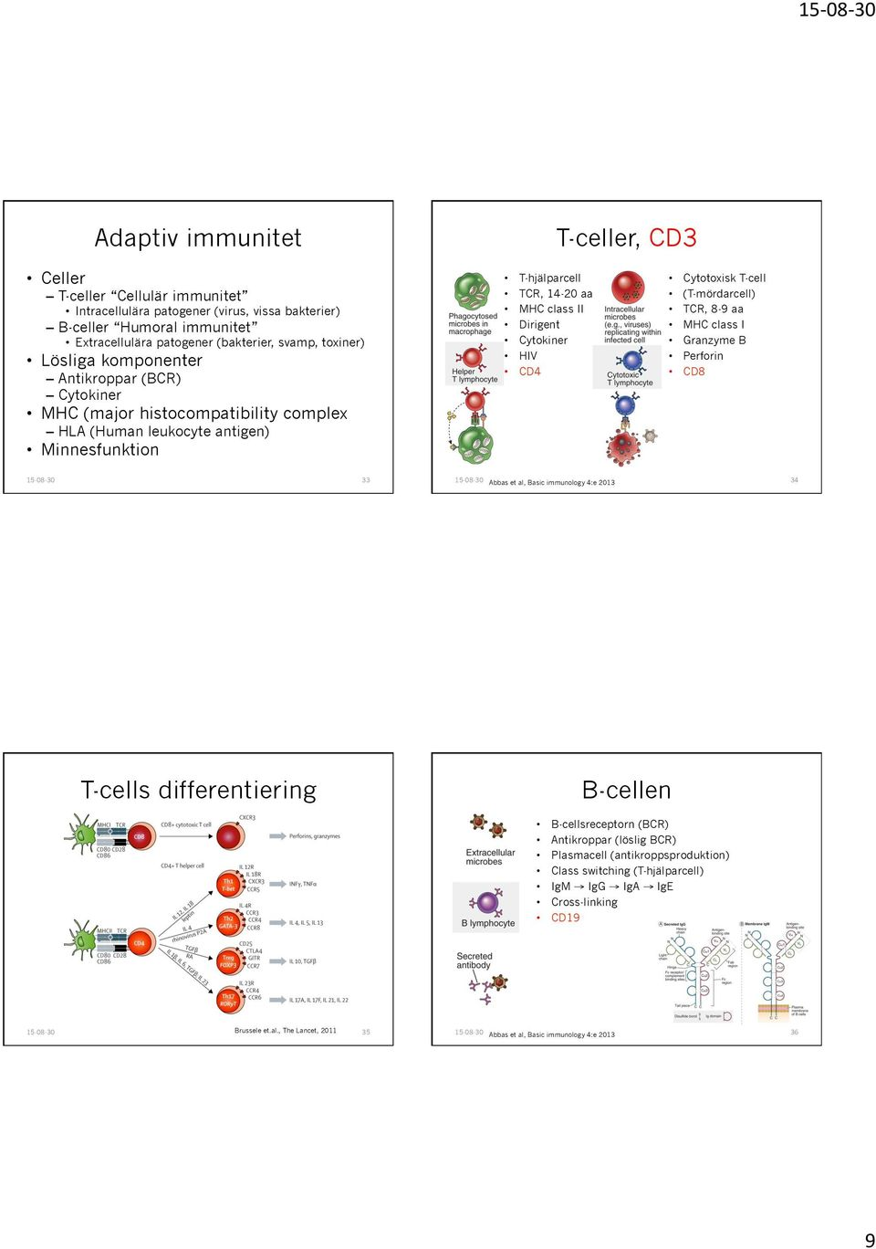Cytokiner HIV CD4 Cytotoxisk T-cell (T-mördarcell) TCR, 8-9 aa MHC class I Granzyme B Perforin CD8 33 Abbas et al, Basic immunology 4:e 2013 34 T-cells differentiering B-cellen B-cellsreceptorn