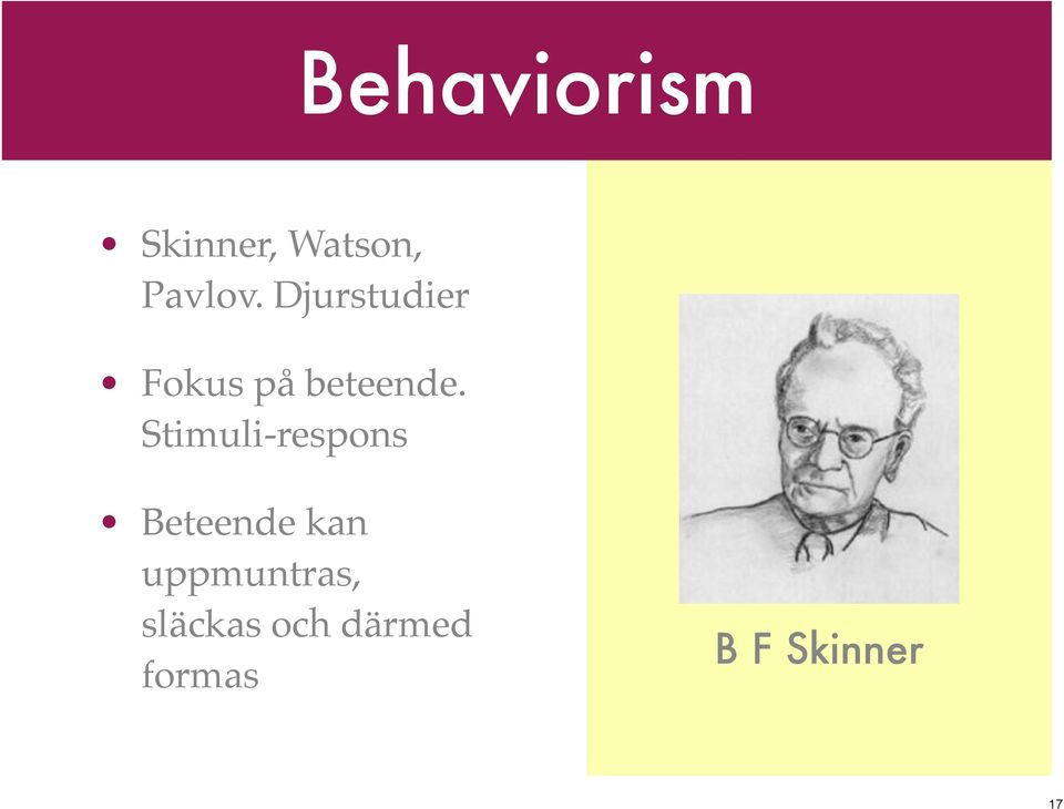 piaget v skinner 0 comparing and contrasting jean piaget and notable theorist whose impact determines child psychology and early childhood education are jean piaget.