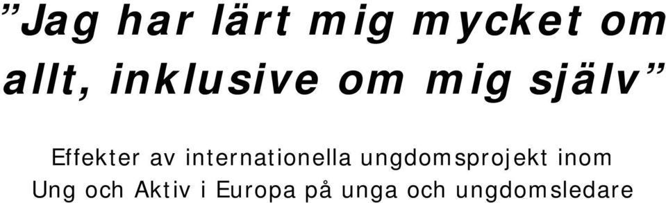internationella ungdomsprojekt inom