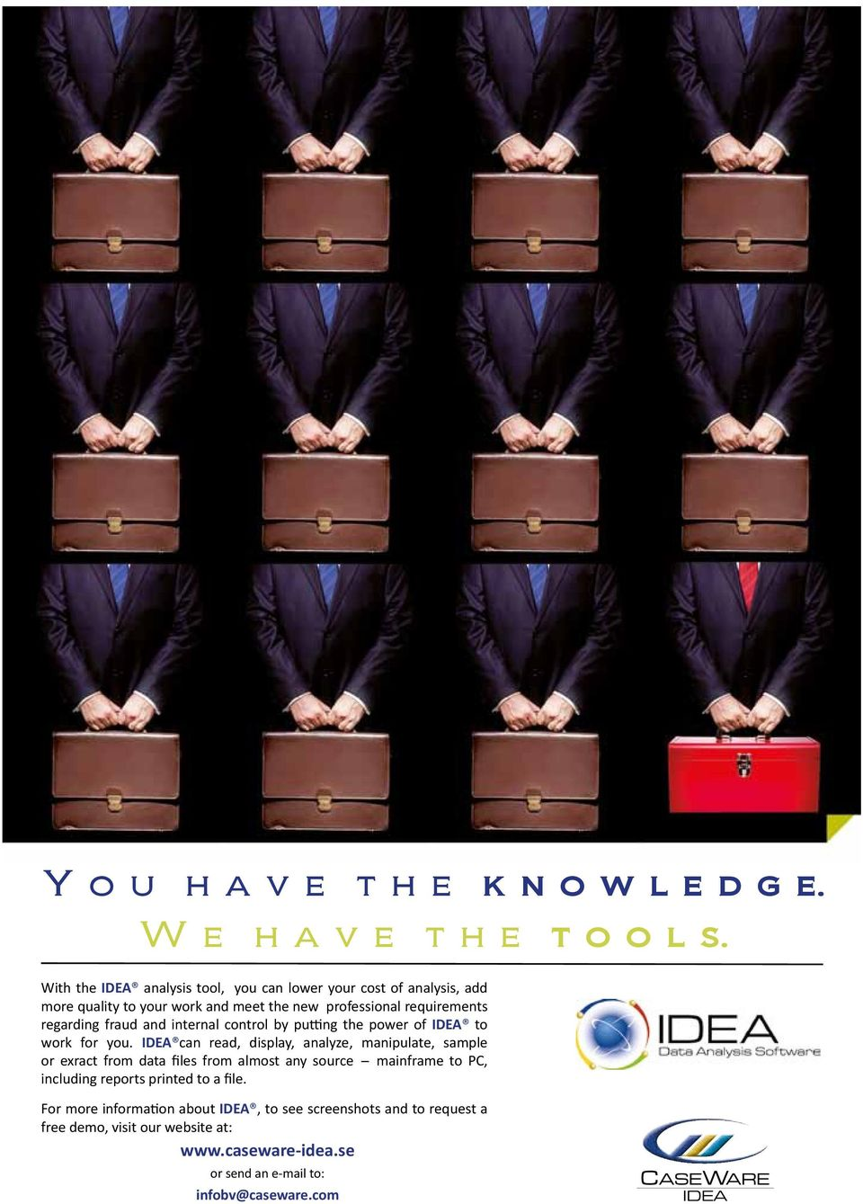 fraud and internal control by putting the power of IDEA to work for you.