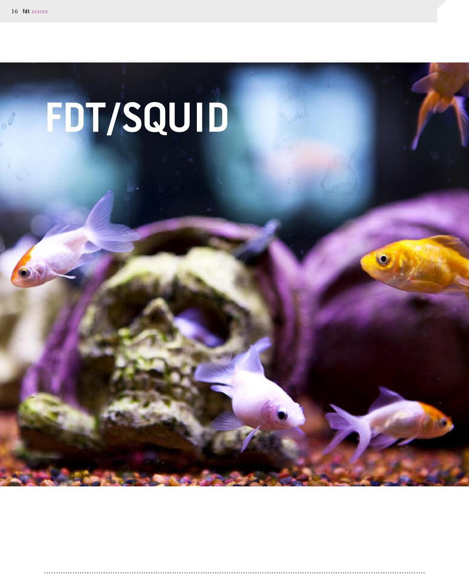 FDT/SQUID