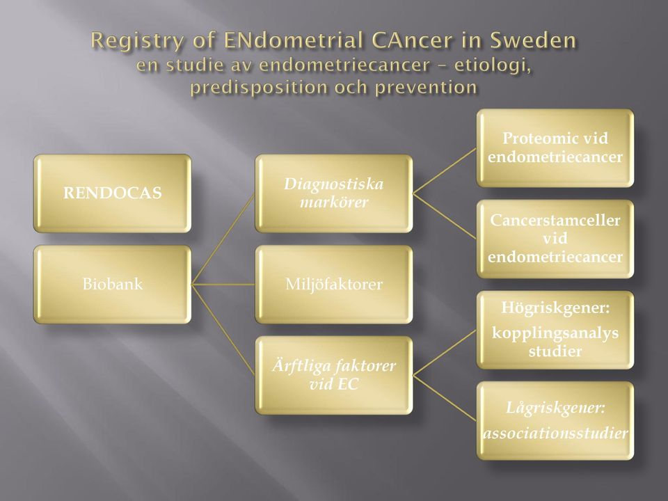 endometriecancer Cancerstamceller vid endometriecancer