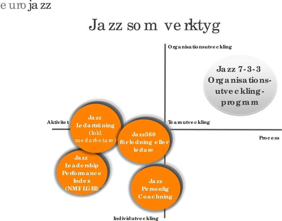 medarbetare) Jazz Leadership Performance Index (NMI/LGRI) Jazz360