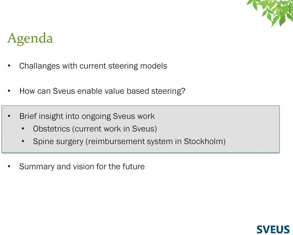 Brief insight into ongoing Sveus work Obstetrics (current work