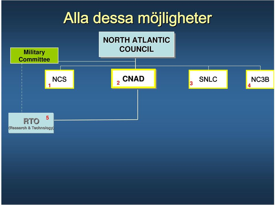 ATLANTIC COUNCIL NCS CNAD SNLC