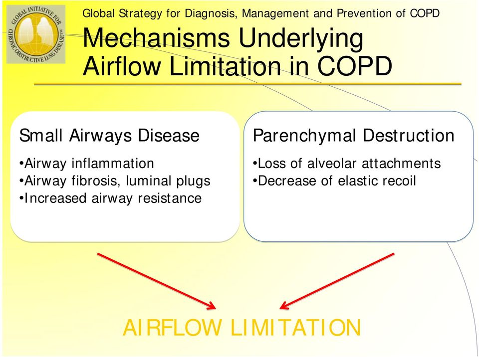 inflammation Airway fibrosis, luminal plugs Increased airway resistance