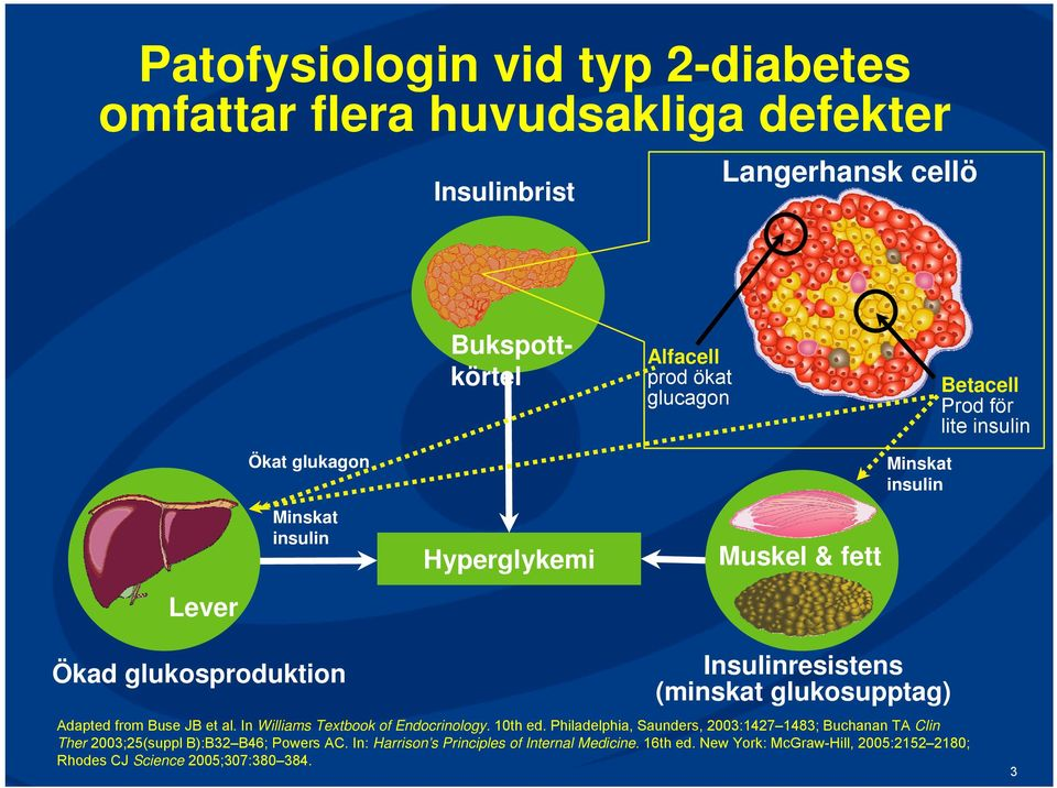 glukosupptag) Adapted from Buse JB et al. In Williams Textbook of Endocrinology. 10th ed.