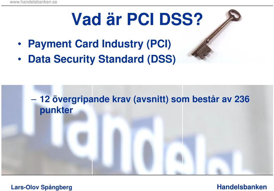 Security Standard (DSS) 12