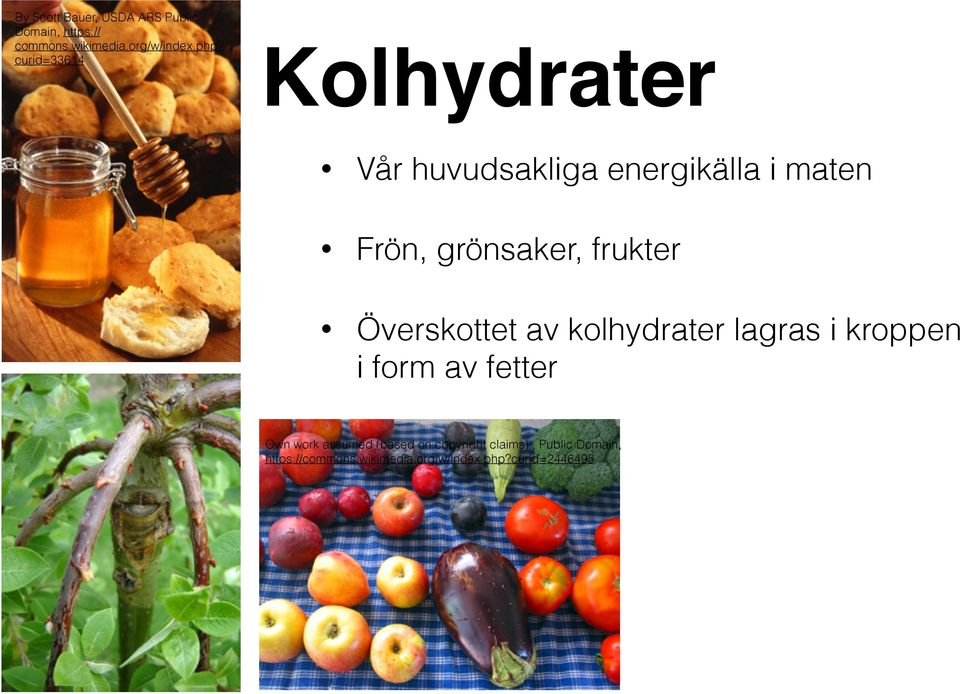 Överskottet av kolhydrater lagras i kroppen i form av fetter Own work assumed (based