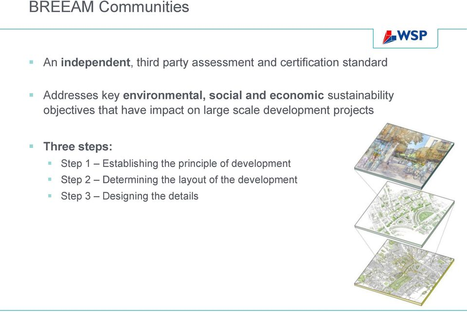 impact on large scale development projects Three steps: Step 1 Establishing the