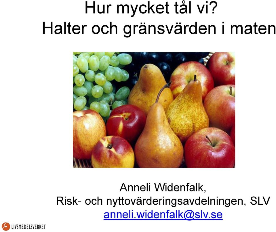 Anneli Widenfalk, Risk- och