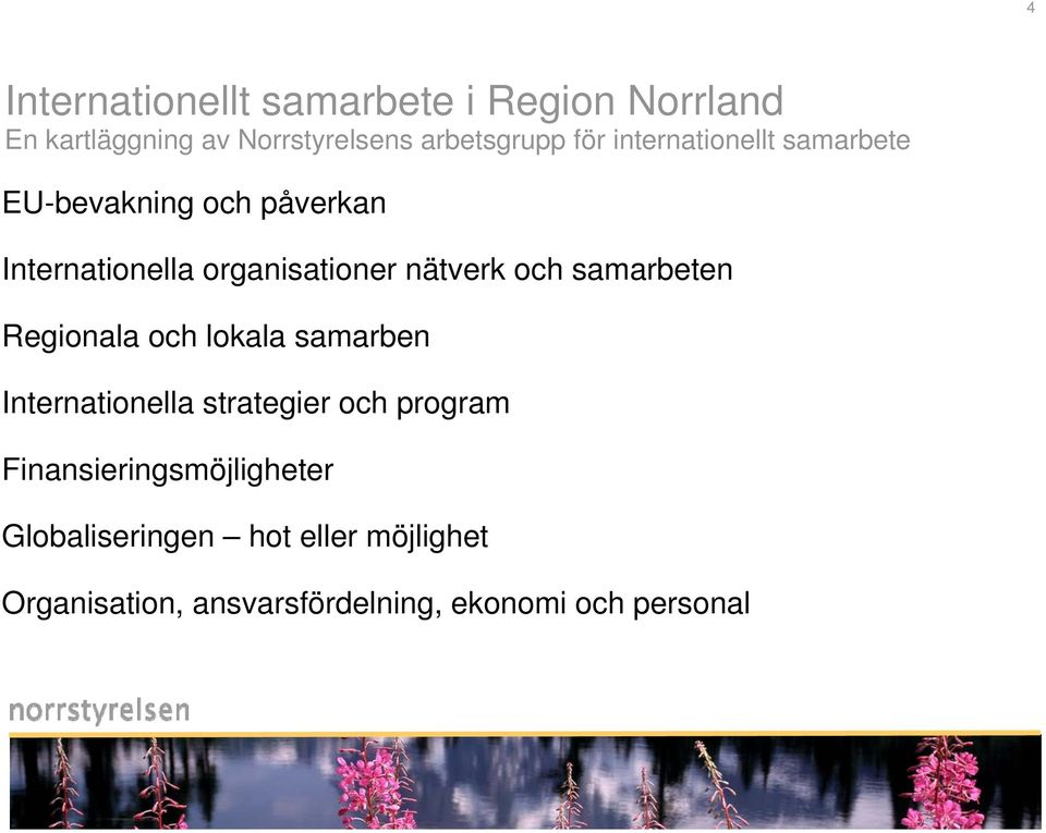 samarbeten Regionala och lokala samarben Internationella strategier och program