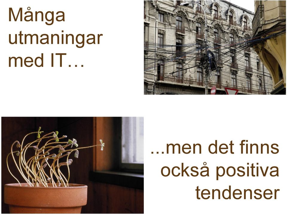 IT...men det