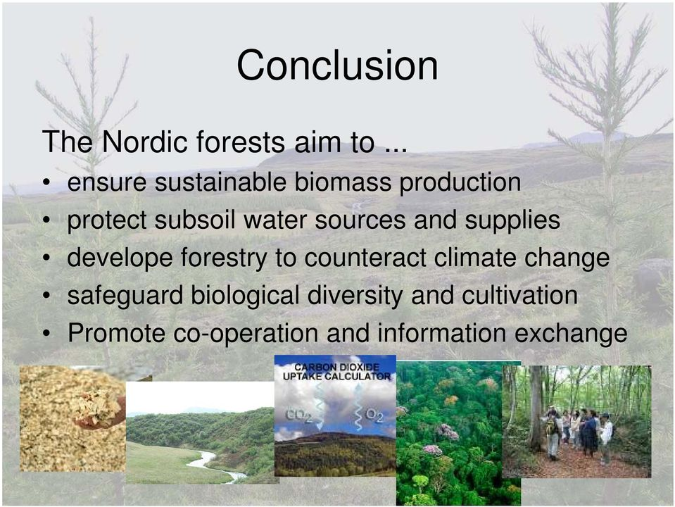 sources and supplies develope forestry to counteract climate