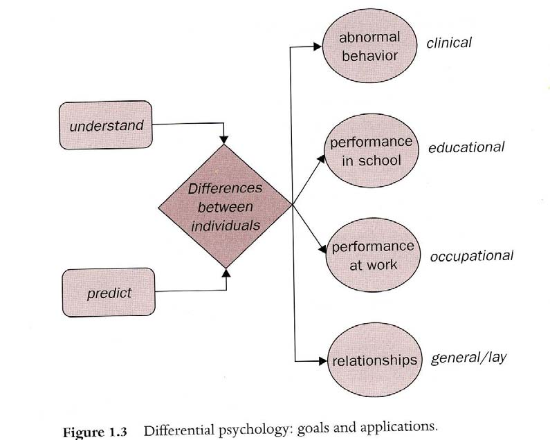 Differentiell Psykologi the branch of psychology that studies the nature, magnitude, causes and consequences of