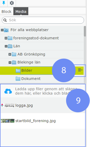 Media Med media avses i EpiServer filer, t.ex.