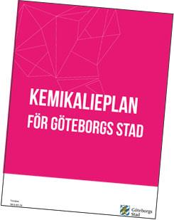 strategiska program och