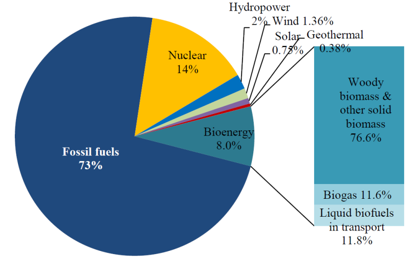 Bioenergy The issues Focus on solid biomass/biogas for heat and power major role for the EU climate & energy objectives.