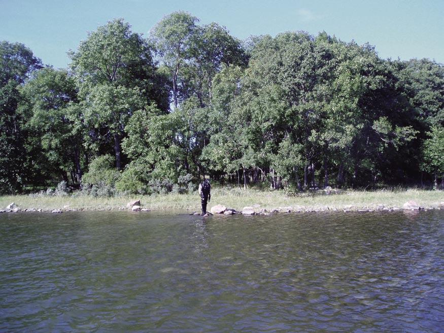 Figure 5-15. Station 6, Kallriga, LFM 715. Diver marking the starting point of a transect. where Vaucheria sp vanished completely.